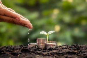 Die Hand des Geschäftsmannes bewässert die Pflanzen, die auf dem Stapel von Münzen wachsen, die auf dem Boden gestapelt sind, finanzielles Wachstum und Geschäftsideen. foto