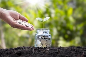 Geben Sie Münzen an eine Flasche gepflanzter Bäume, in die Sie Geschäftswachstumsideen investiert haben. foto