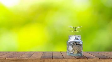 Ideen für die Finanz- und Altersvorsorge, Flaschenpflanzen von Bäumen, um Geld auf Holztisch zu sparen, und verschwommener natürlicher grüner Hintergrund. foto