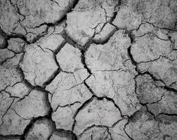 abstrakte Land-trockene Bodentextur foto