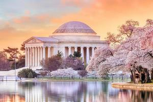 Jefferson Memorial während des Kirschblütenfestivals foto