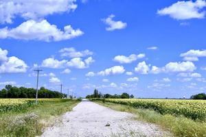 Landstraße unter blauem Himmel foto
