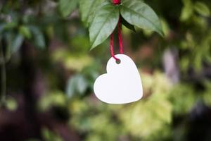 Herz hängt an den Zweigen. foto