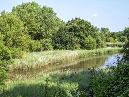 Blick über einen Teich bei Barlow Common, North Yorkshire, England foto