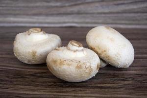 Champignons auf Holzuntergrund foto