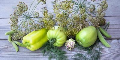 Paprika, grüne Tomate und Dillschirme liegen in einer Reihe foto