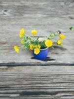 Gelbe frische Wildblumen in blauer Keramikvase, auf Holzveranda-Hintergrund. Stillleben im rustikalen Stil. Nahaufnahme. Frühling oder Sommer im Garten, Landschaftslebensstilkonzept. Platz kopieren foto