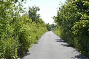 schöne leere Asphaltstraße in der Landschaft auf farbigem Hintergrund foto