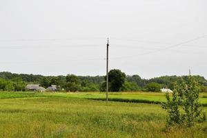 schöne Horizontlandschaft in Dorfwiese foto
