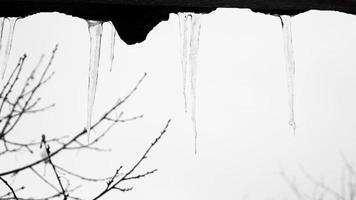 Eiszapfen, die von einem Dach herabhängen foto