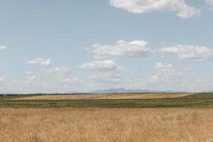 schöne Heufeldlandschaft foto