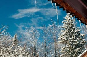 helle Eiszapfen im Sonnenlicht. Frühling blauer Himmel foto