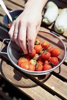 Mannhand hält einen Eimer mit Erdbeeren foto
