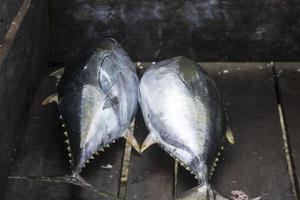 die verschiedenen Meeresfrüchte, die auf dem Fischmarkt verkauft werden foto