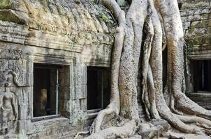 Angkor Wat Ruinen berühmtes Wahrzeichen Tempel Detail in der Nähe von Siem Reap Kambodscha foto