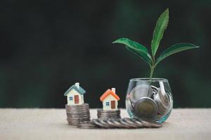 Haus auf Münzen gelegt. der Baum wächst auf Münzen. foto