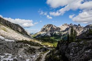 2021 06 26 Cortina Dolomitwiesen vier foto