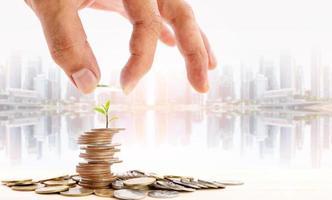 Lege eine Münze auf einen Münzstapel mit einem kleinen Baum darauf. foto