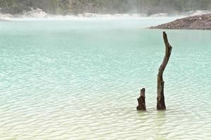 friedlicher grüner See foto