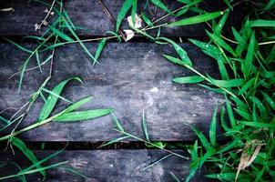 dunkler holzhintergrund und holzboden mit rahmengrünem gras foto