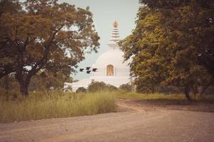 der geburtsort von gautam buddha foto