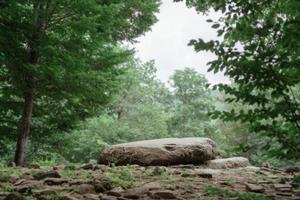 großer Stein zum Meditieren in einem grünen Wald foto