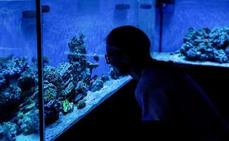 Frauensilhouette, die Aquarien mit Fischen im Ozeanarium beobachtet foto