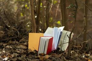 Nahaufnahme bunter Bücherstapel foto
