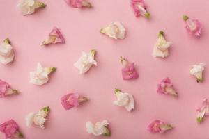 flach legen schöne Komposition Blumen foto