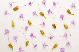 die Draufsicht Komposition Blumen foto