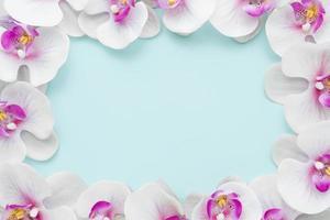 flacher rosa Orchideenrahmen. Auflösung und hochwertiges schönes Foto