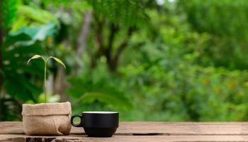 Pflanzen in Stofftöpfen und Kaffeetassen foto
