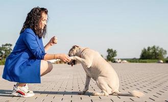 junge attraktive Frau, die mit ihrem Hund im Park spielt foto