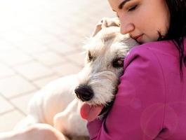junge attraktive Frau, die ihren Hund im Park umarmt foto