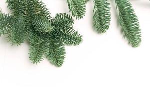 Weihnachtstannenzweige mit Platz für Ihren Text foto