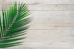 Draufsicht Palmblatt auf Holztisch mit Kopierraum foto