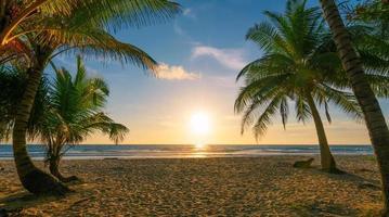 Kokospalmen am Strand Sonnenuntergang Himmel foto