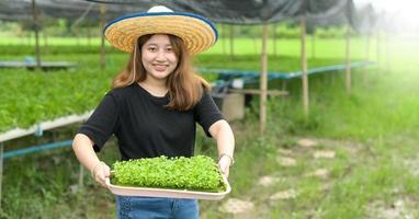 Mädchenbauer zeigt ein Tablett mit Gemüsesetzlingen in einem Gewächshaus. foto