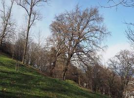 Hügel in Turin foto