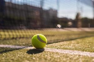 Tennisball liegt auf weißer Linie auf Hartplatz unter Sonnenlicht foto