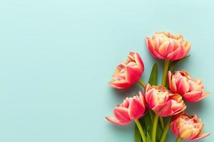 Frühlingsblumen, Tulpen auf Pastellfarbenhintergrund. Retro-Vintage-Stil. foto