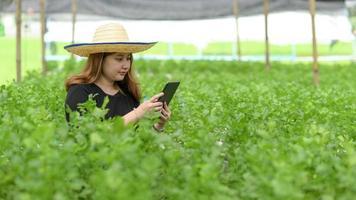 Teenager-Bauer mit Tablet für modernen Gemüseanbau im Gewächshaus, Smart Farm. foto