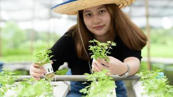 asiatischer Teenager-Bauer, der Hydrokulturgemüse im Gewächshaus, intelligenter Bauernhof zeigt. foto