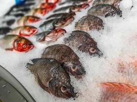 Nahaufnahme von rohem frischem Fisch, der auf Eis im Marktstand für Meeresfrüchte kühlt? foto