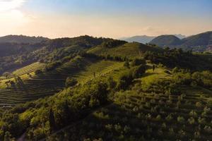 luftpanorama von montevecchia schöne terrassen foto