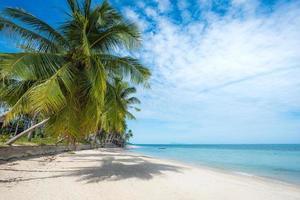 schöner tropischer Strand mit Palmen foto
