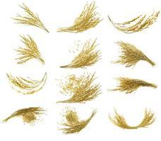 Sammlung von Ohren aus klebrigem Paddy-Reis auf weißem Hintergrund foto