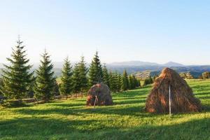 Heuhaufen bei Sonnenuntergang. Wiese, Stück Grünland, vor allem als Heu. Karpaten, Ukraine foto