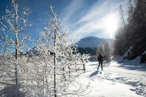 schneeweiß in der Nähe der Langlaufloipe foto