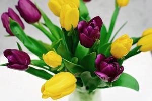 Bouquet von lila und gelben Tulpen Frühlingsblumen auf hellem Hintergrund Nahaufnahme. Platz kopieren. Muttertag. Internationaler Frauentag. foto
